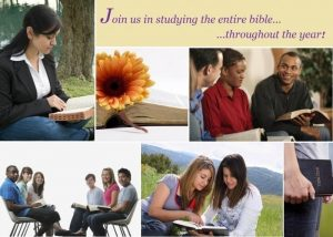 daily-bible-study