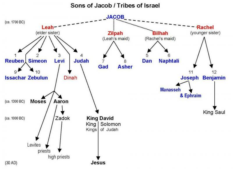 1 Chronicles 2 – The Family of Israel