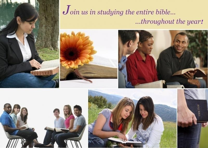 Daily Bible Study Cover Picture