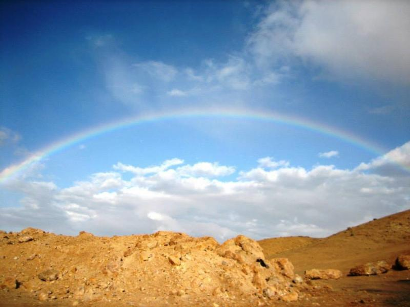 Deuteronomy 29 – God Renewed His Promise to Israel