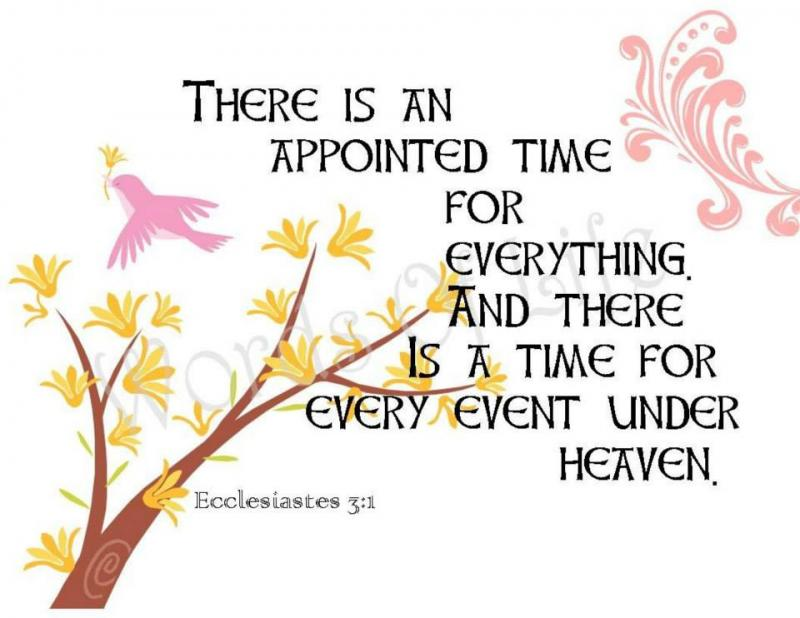 Ecclesiastes 3 – Everything Has Its Time