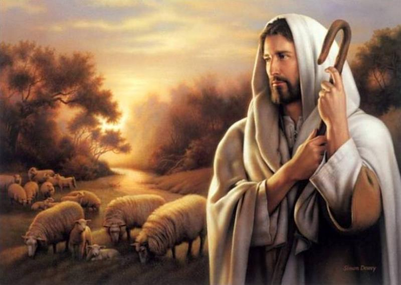 Ezekiel 34 – GOD Is The True Shepherd