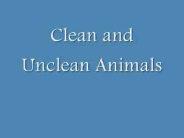Leviticus 11 – Clean and Unclean Animals