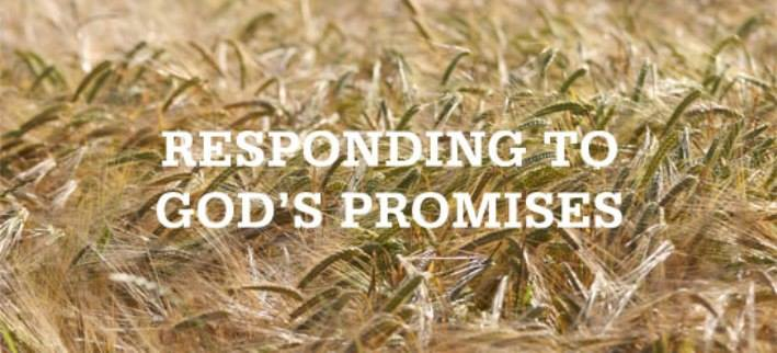Leviticus 26 – God's Promises of Blessings and Judgment