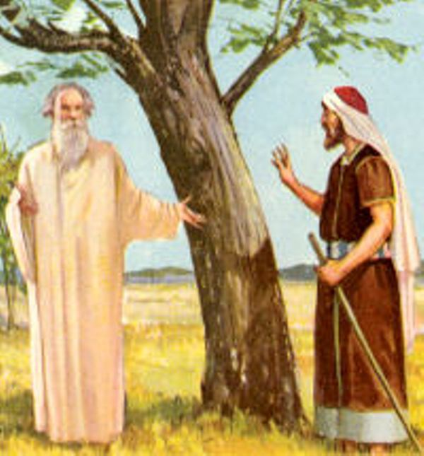 Luke 13b – Jesus Told the Parable of the Fig Tree