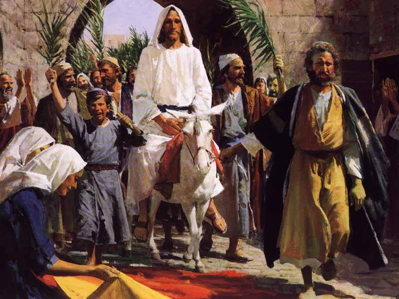 Mark 11: Jesus Rode into Jerusalem, and Jesus Drove Out Those Who Bought and Sold in the Temple.