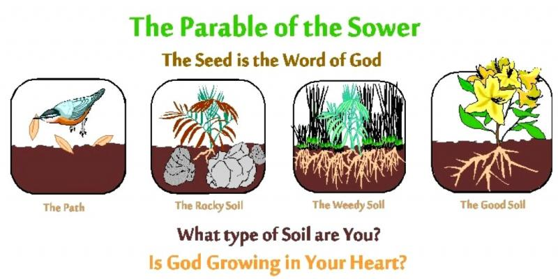Mark 4a: Jesus Preached About the Kingdom of GOD and Jesus Told the Parable of the Sower.