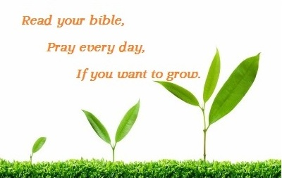 Read your bible pray every day if you want to grow,
