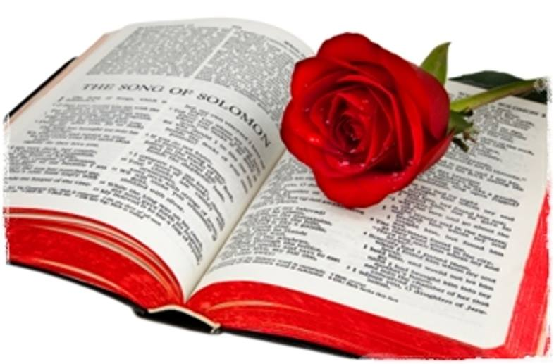 Song of Solomon 1 – Solomon's Love for a Shulamite Girl