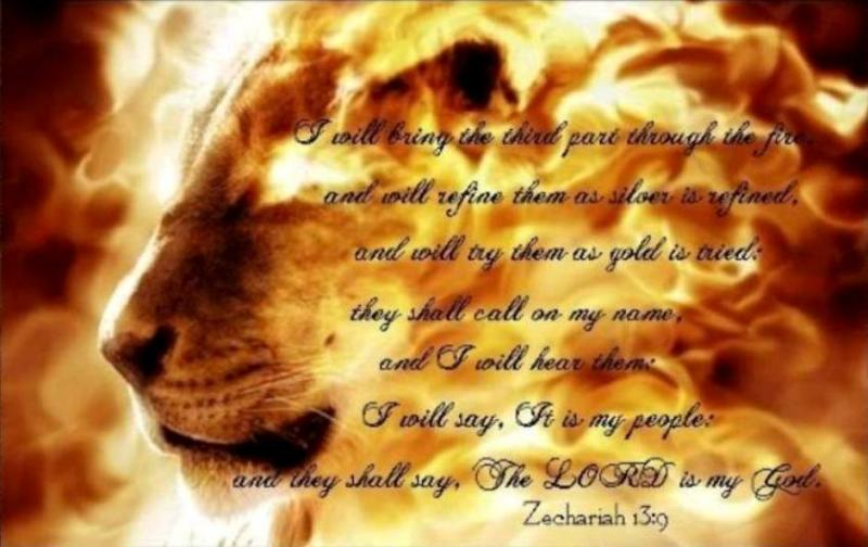 Zechariah 13 – The Prophecy That JESUS CHRIST Is The Shepherd Savior